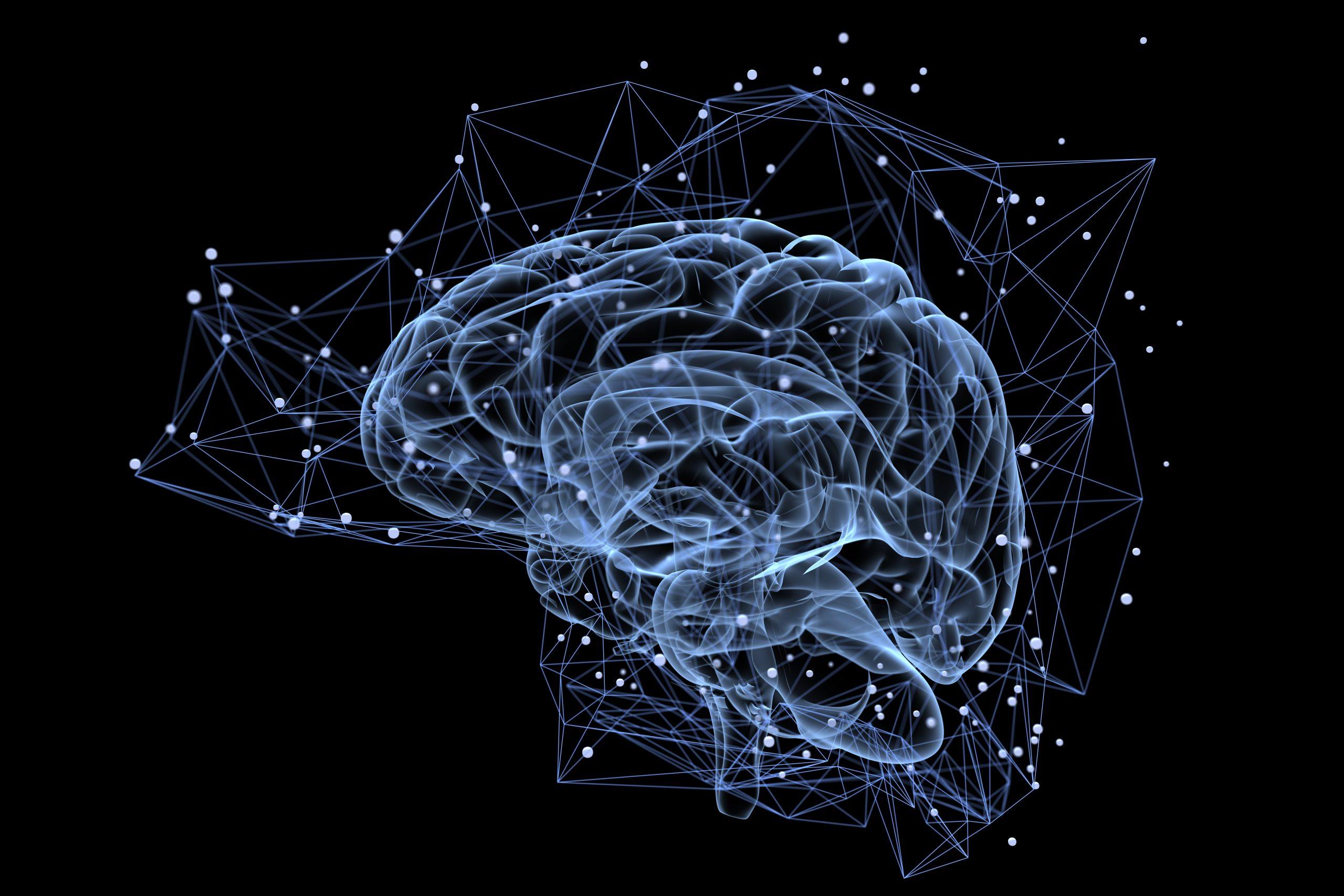10 moduł – mózg i obwodowy układ nerwowy, zaburzenia nastroju i choroby psychiczne, uwalnianie emocji-zajęcia praktyczne